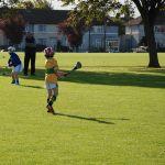 Pearse Park Crumlin-mini